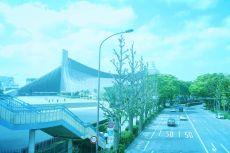 scenery334