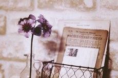 flower748-2