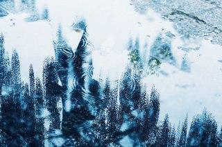 【高解像度】水溜りに映る藤と人影(フジ)(3パターン)