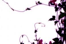 flower153