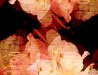 repeat-flower002