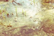 outdoor-scenery-004-2