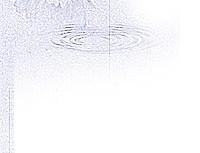 norepeat-spider001_3