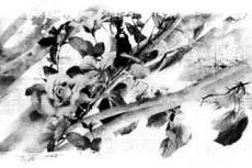 norepeat-flower065_8