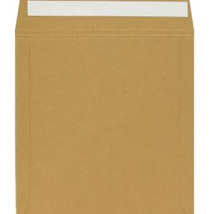 "neo 12"" lp vinyl card mailer peel & seal"