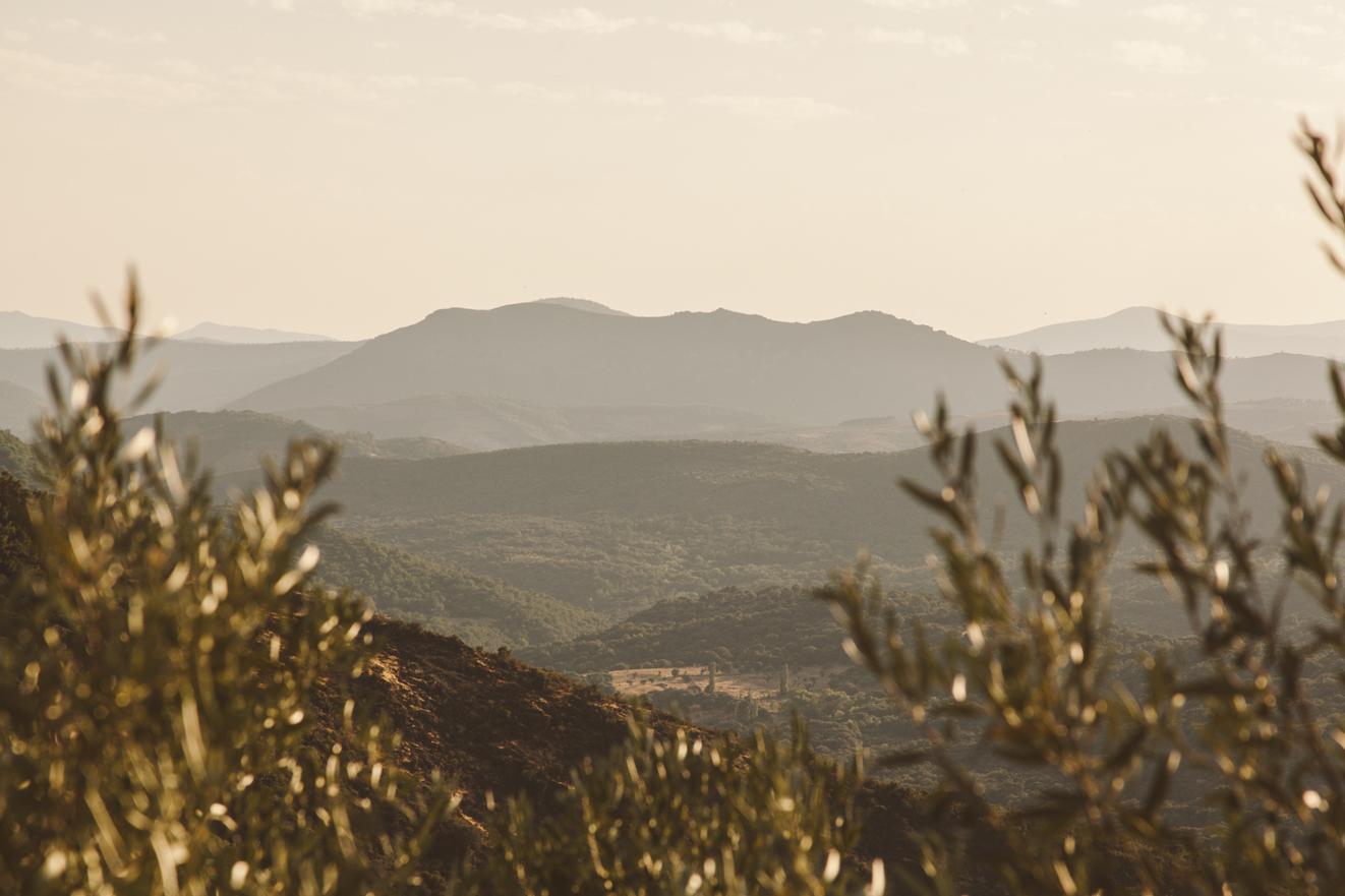 Roadtrip durch das Hinterland von Spanien - Comunidad autónoma de Castilla y León. Foto: Neoheimat