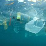 Vírusmaszkok és gumikesztyűk tengere