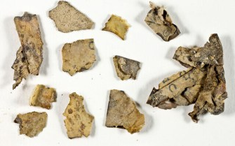 21.The-Scrolls-Fragments-before-conservation-in-the-IAA-Lab.-Shai-Halevi-Israel-Antiquities-Authority-640x400