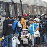 Dánia hazaküldené a szíriai migránsokat