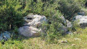 Láthatatlanná tévő köpenyt fejlesztettek Izraelben