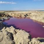 Vörösre változott a víz a Holt-tengernél