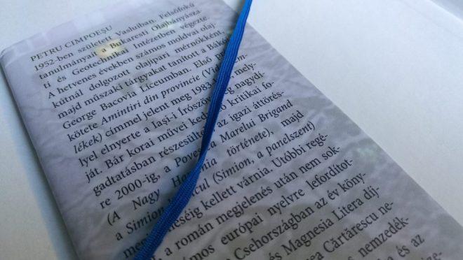 A szerző bemutatása a Simion, a panelszent című könyvben.