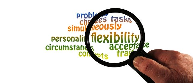 Adaptability Or Change Management