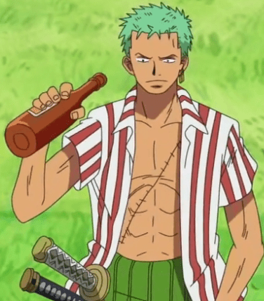 Zoro the 2nd captain of the Strawhat Pirates
