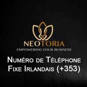 Numéro de téléphone Fixe irlandais