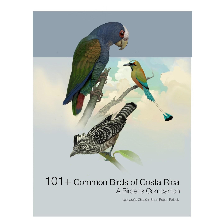101+ Common Birds of Costa Rica eBook