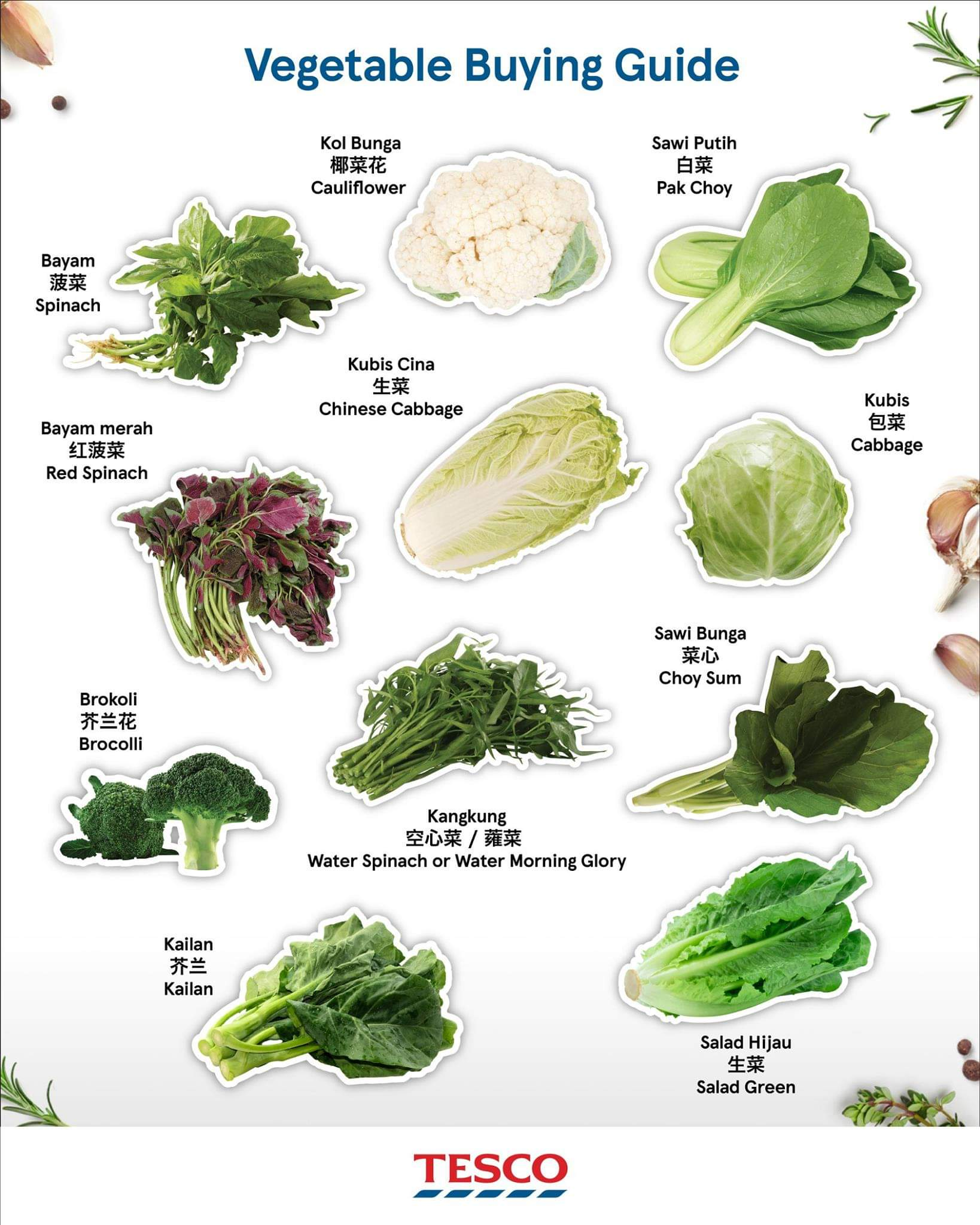 Types of Vegetable