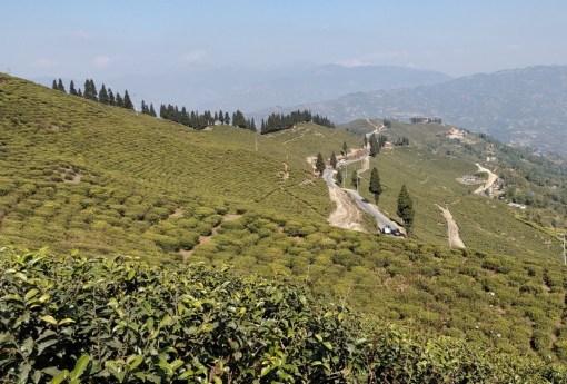 A l'Est du Népal