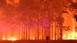 Australia bushfires 1