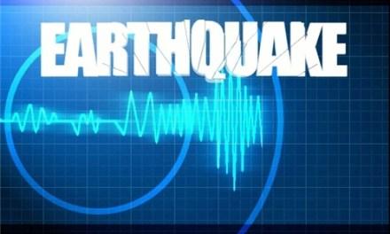 7.3-magnitude quake hits off Tadine, New Caledonia: USG