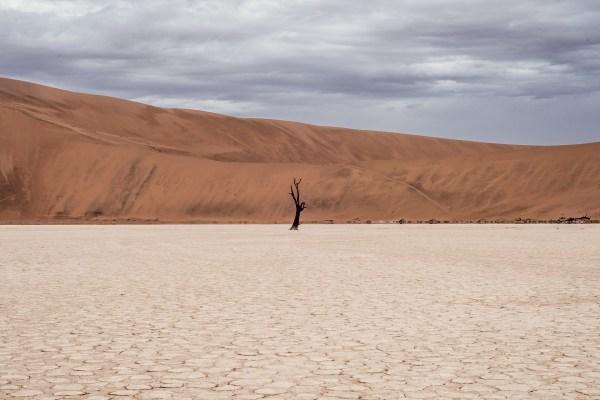 desert-landscape-Pixabay