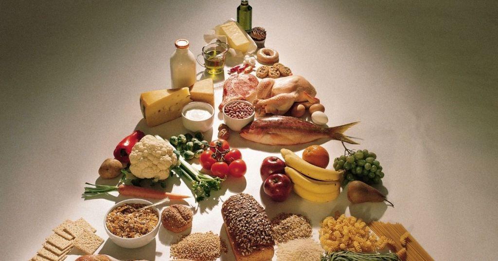 body building foods