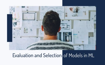 Evaluation and selection of models
