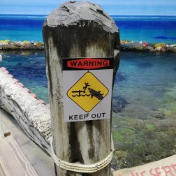 Vorsicht Haie