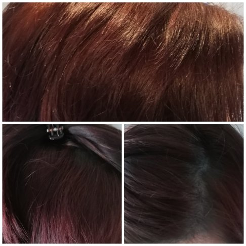 Colovist #turquoise hair auf Rot