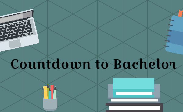Bachelor – The final Countdown