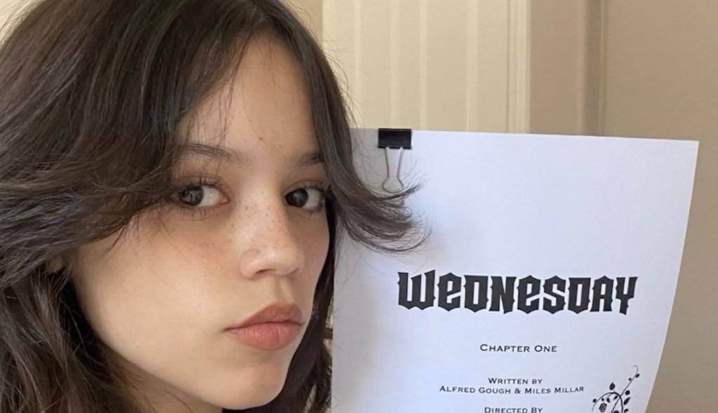 Addams Family Wednesday Netflix