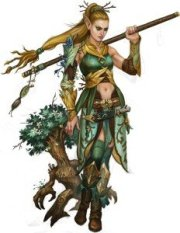 druid D&D