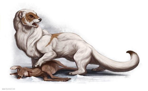 bandits in D&D giant weasels