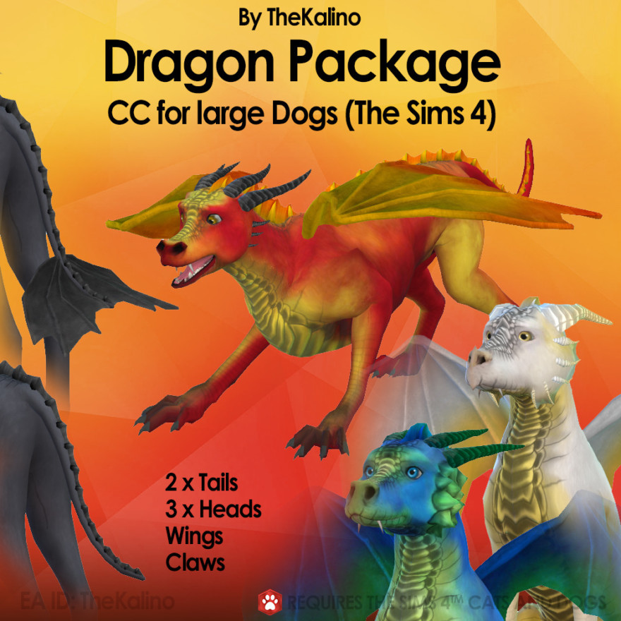 Dogs To Dragons Package