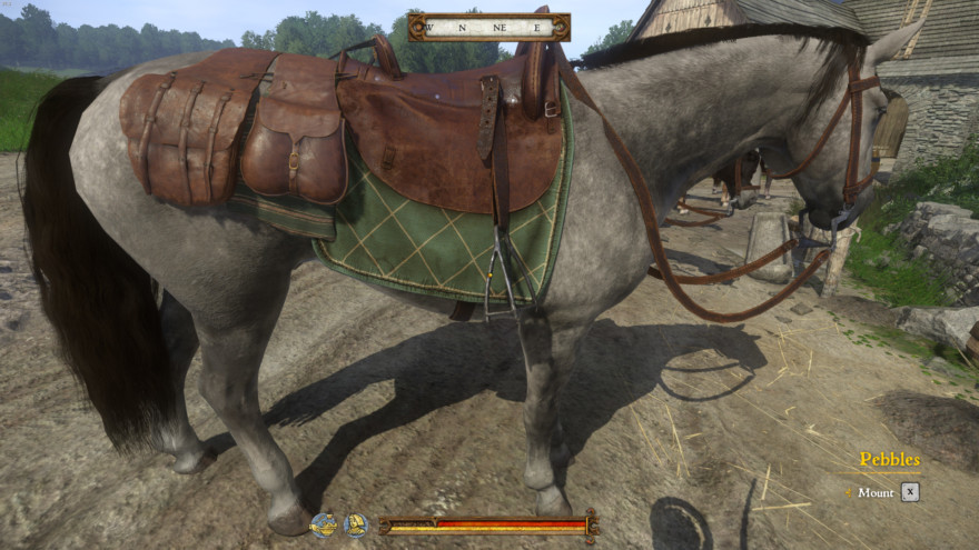 Pebbles Is The Best Horse