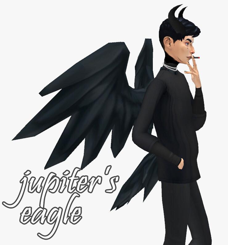 Jupiter's Eagle