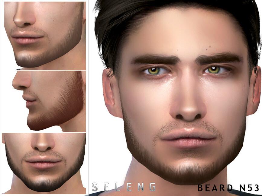 Beard N53