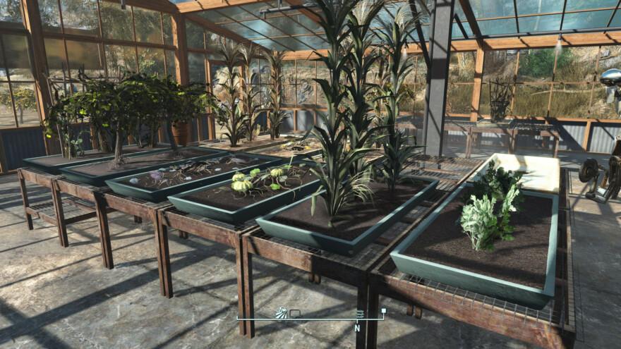 Clean Settlement Greenhouse