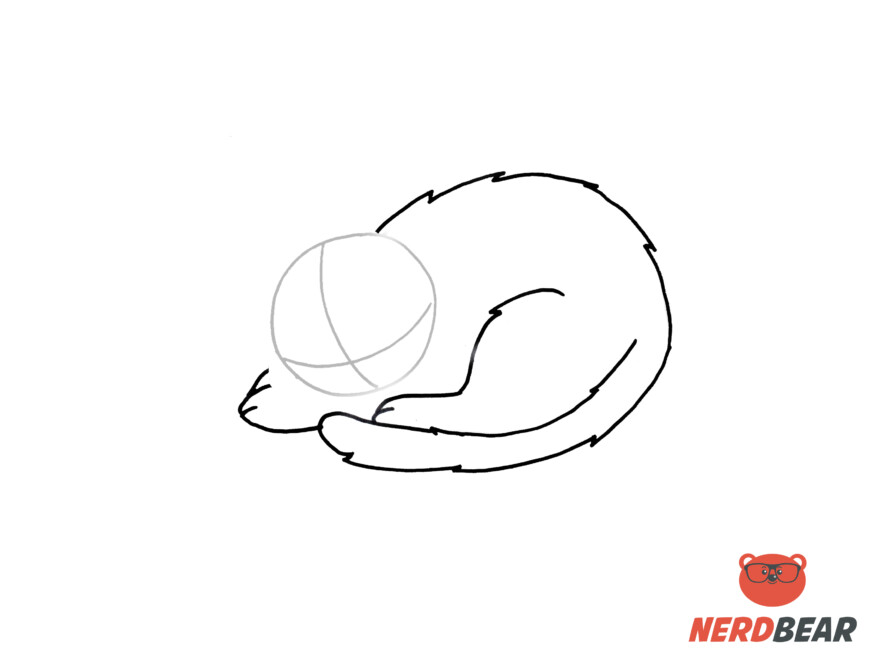 How To Draw A Sleeping Anime Cat 5