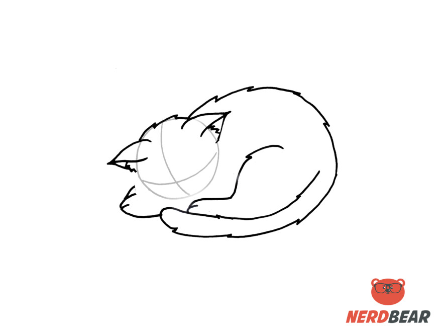 How To Draw A Sleeping Anime Cat 6