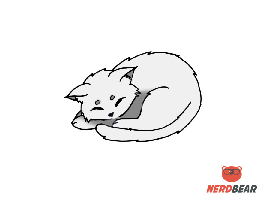 How To Draw A Sleeping Anime Cat 9
