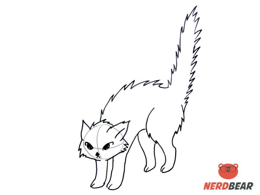 How To Draw An Angry Anime Cat 9
