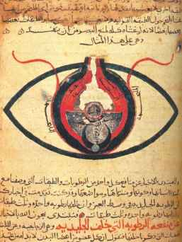 Göz Anatomisi