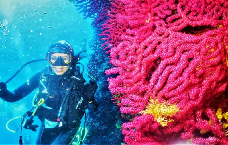 Ayvalık, Kırmızı Mercanlar
