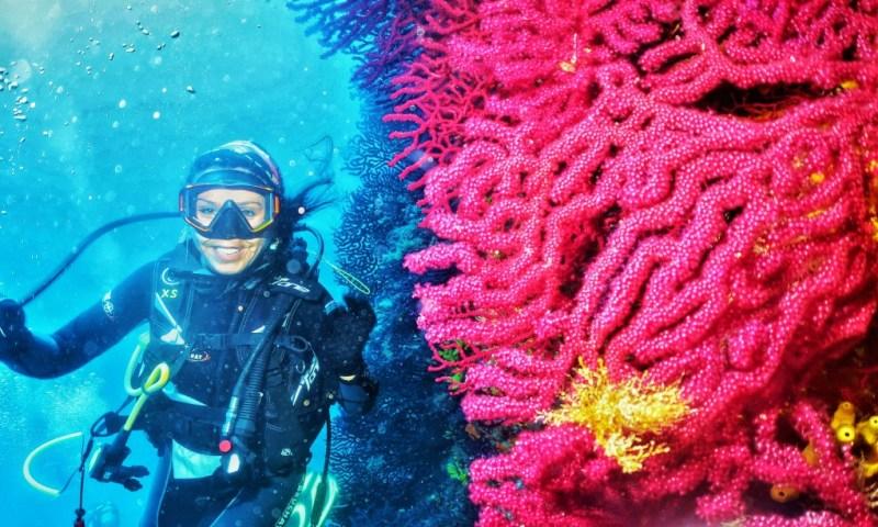 Kırmızı Mercanların Peşinde Ayvalık