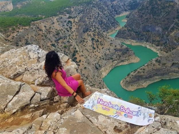 Arapapıştı Seyir Tepesi
