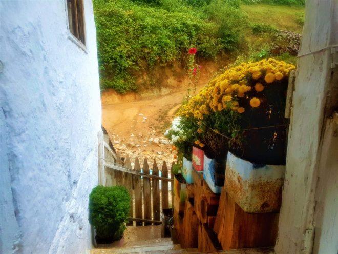 Sansarak Kanyonu, Çiçekli ev