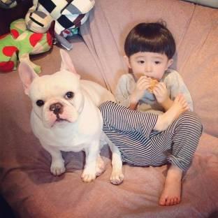 dog_friendship6