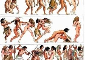 A História da Humanidade