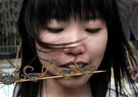 China, espetos e insetos